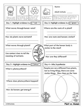 Plants vs Humans - Plant Fluency