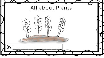 Plants worksheet