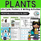 Plant Unit: All About Plants, Life Cycle and Activities fo