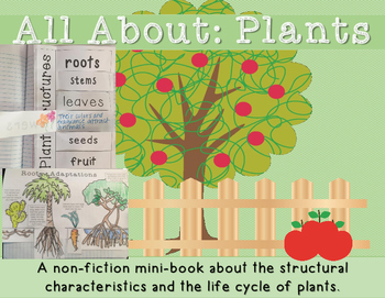 Plants - Plants Lifecycle Minibook and Vocabulary Foldable