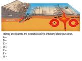 Plate Tectonics Diagram and Summarizing Activity