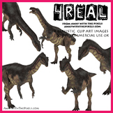 Plateosaurus - 4 Realistic Dinosaur Clip Art Images