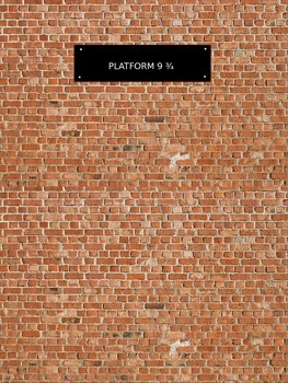 Platform 9 3/4 wall poster Harry Potter