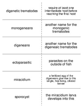 Platyhelminthes Vocabulary Flash Cards for Invertebrate Biology