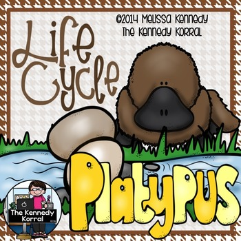 Life Cycle of the Platypus {Anchor Charts, Center, IN & MORE!}