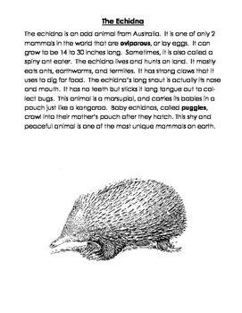 Platypus & Echidna Articles, Questions, Venn Diagram: Oviparous Mammals