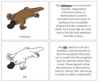 Platypus Nomenclature Book