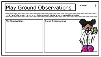 Play Ground Abiotic and Biotic Observations