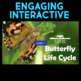 Play a Video Game - Attack of the Hogweed & Parts of a Flo