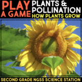 Play a Video Game - Plant Life Cycle - Second Grade Science Stations