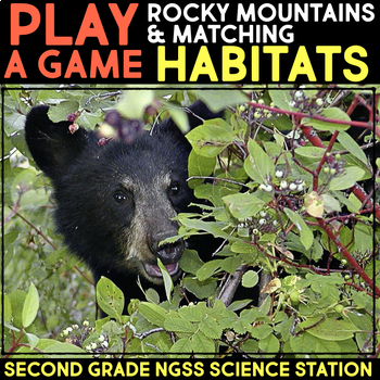 Play a Video Game: Rocky Mountains & Habitats - Second Grade Science Stations