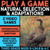 Play a Video Game about Bird Adaptations - Science Station