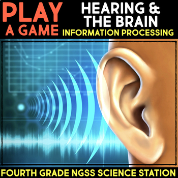 Play a Video Game about Seeing and Tasting - Information Processing