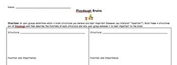 Playdough Brains Activity