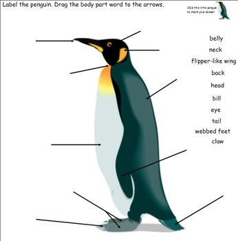 Playful Penguins Smartboard Activities