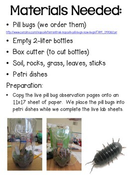Playing with Pill Bugs ~ Lab Pack with Pill Bug Information & Lab Sheets ~  FREE