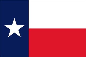 Pledge to the Texas Flag Activity