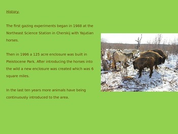 Pleistocene Park - Power Point - Information Facts Pictures