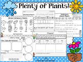 Plenty of Plants!