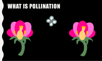 Pollination Stations