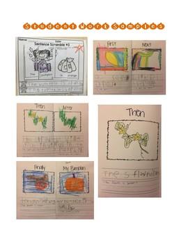 Plenty of Pumpkins Integrated Thematic Unit