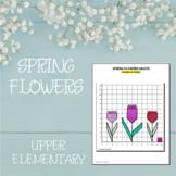Plotting Coordinates Holiday & Seasonal Math Worksheets