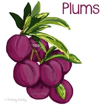 Plums - plum clip art, plum graphic, plum Printable Tracey Gurley Designs