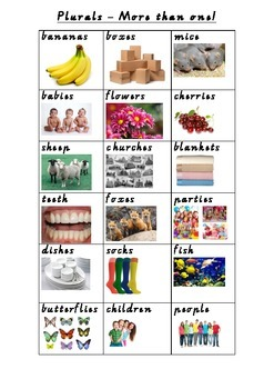 Plural Flash Cards