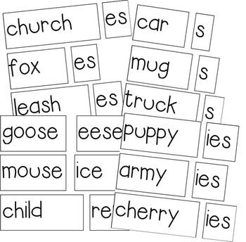 Plural Noun FLIPPERS - Adding -s, -es, -ies, and Irregular Endings
