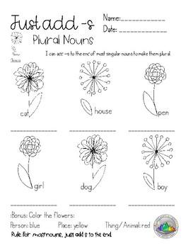 Plural Noun BUNDLE {s, es, ies, irregular} Lessons, Activities, Worksheets, MORE