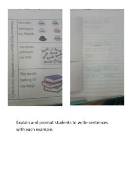 Plural Noun Possessive Interactive Notebook Page