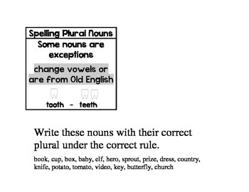 Plural Noun Rules for Interactive Notebook