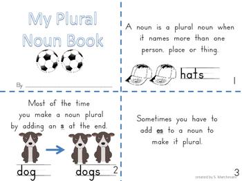 Plural Noun Sort and Booklet
