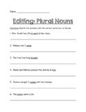 Plural Noun Worksheet