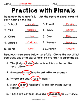 Plural Noun Worksheet