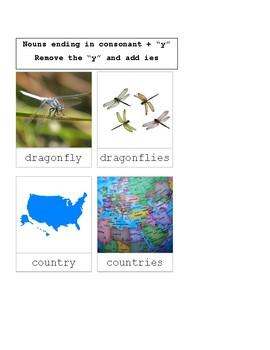 Plural Nouns- 3 Part Cards