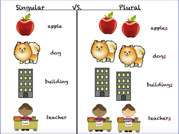 plural nouns by tori turnipseed teachers pay teachers creating clipart for teachers pay teachers TPT Clip Art