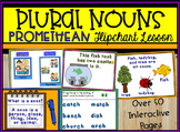Plural Nouns ActivInspire Promethean Flipchart Lesson - over 50 pages!