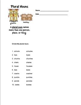 Plural Nouns Assessment