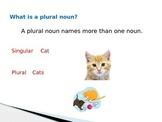 Plural Nouns- Comman Core