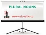 Plural Nouns Course Notes