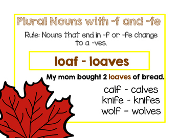 Plural Nouns Differentiated Lessons , Activities and Assessments (L.2.1.B)