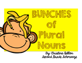 Plural Nouns Differentiated Lessons , Activities and Asses