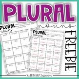 Plural Nouns - FREEBIE