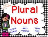 Plural Nouns Graphic Organizers, Anchor Chart Signs, & Fli