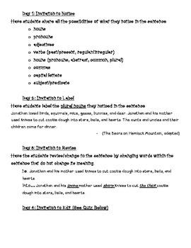 Mentor Sentences - Plural Nouns