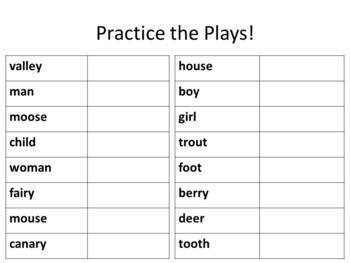 Plural Nouns Playbook