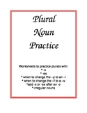 Plural Nouns Worksheets and Rules for Plurals