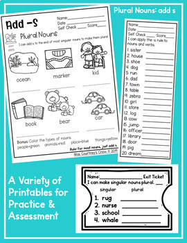 Plural Nouns FREEBIE: Add s : Differentiated Pack for Primary Grades