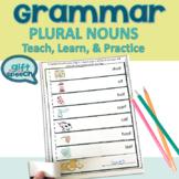 Irregular plurals and regular plurals teach & practice spe